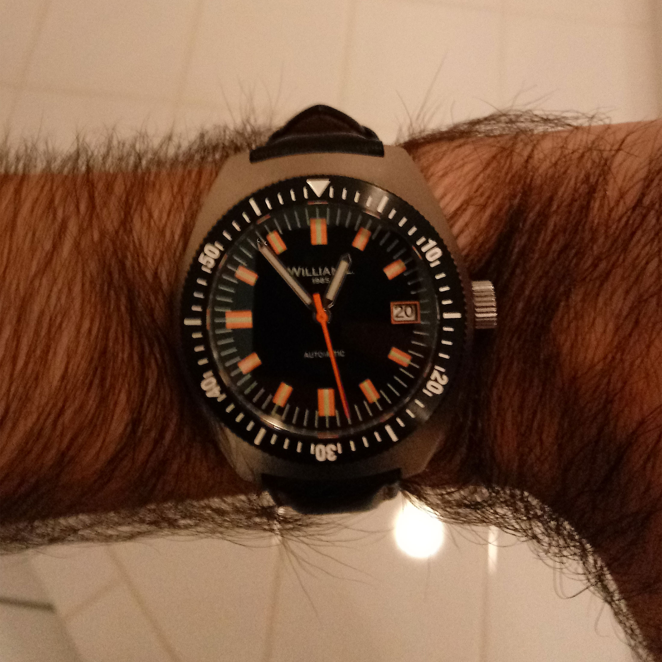William L Diver Wristshot Dylan